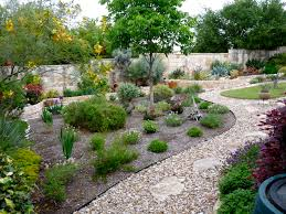 austin native plants photos landscape design landscaping round rock tx landscape