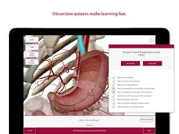Human Anatomy Exam Questions Anatomy U0026 Physiology Android Apps On Google Play