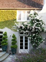 Build A Rose Trellis Climbing Plants For House Walls Google Search Home Sweet Home