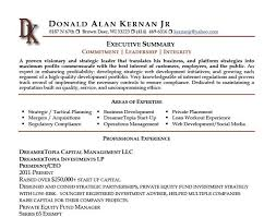 Executive Summary Example For Resume by Resume Summary Professional Summary For Resume Examples Manager