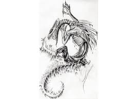 tribal lizard butterfly lion tattoo designs real photo pictures
