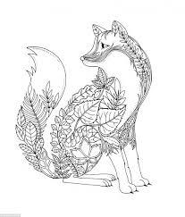 splendid design inspiration grown up coloring book johanna basford