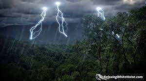 rain forest thunder u0026 rain sleep sounds white noise 10 hours