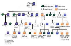 unit 7 genetics