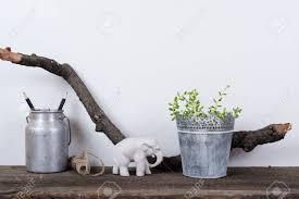 decor plants home 2861 best plants images on pinterest plants