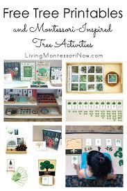 montessori tree printable free tree printables and montessori inspired tree activities