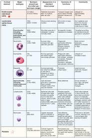 18 3 erythrocytes anatomy and physiology
