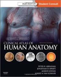 Human Anatomy And Physiology Study Guide Pdf Anatomy And Physiology With Integrated Study Guide 6th Edition Pdf
