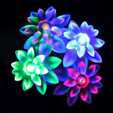 Fairy Lights Outdoor by 20 Led Usb Powered Double Lotus Flower Fairy Lights 3 5m For