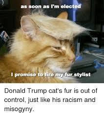 Cat Soon Meme - 25 best memes about donald trumps cat donald trumps cat memes