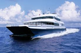 whale watching boat tours and ferries boston harbor cruises
