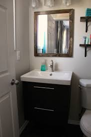 Bathroom Renovation Ideas 2014 Turtles And Tails Ensuite Bathroom Reno Reveal