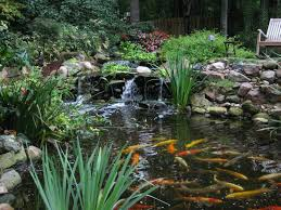 Waterfalls In Backyard Ponds by 9 Awesome Diy Koi Pond And Waterfall Ideas For Your Back Yard
