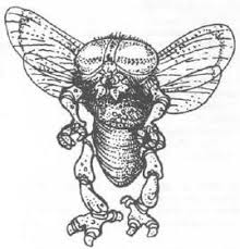 assassin bug dungeons u0026 dragons