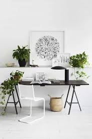 Plants For Desk Minimalist Home Office With Indoor Plants Good Indoor Plants For