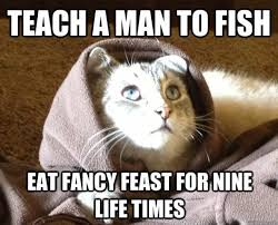 Mean Jesus Meme - biblical moments if jesus was a cat 14 pics izismile com