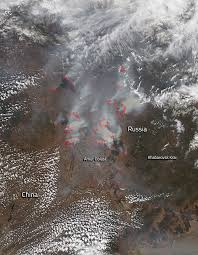 Wild Fires In Canada Bc by Forest Fires Consume Large Stretches Of Russian Land Nasa