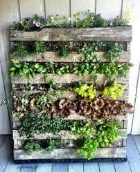 Pallet Ideas For Garden Diy Vertical Pallet Garden Great For Patios Decks Or Terraces