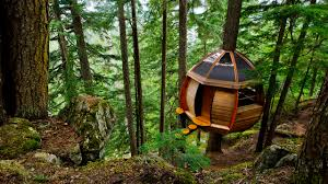 images about girls tree house on pinterest kid houses treehouse