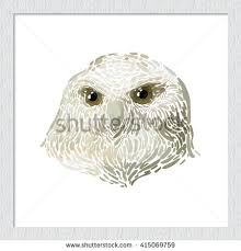 owl drawing by hand stock illustration 311780534 shutterstock