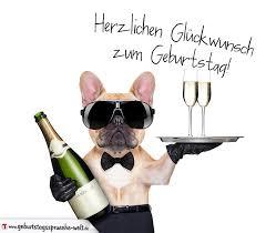 coole geburtstagssprüche glückwunschkarte zum geburtstag mit mit coolem hund