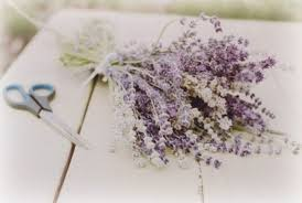 Lavender Home Decor Take Me Away 28 The Lavender Fields Of Provence This Is