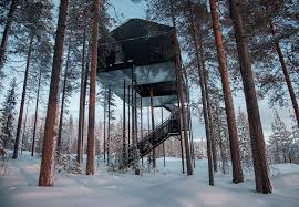 tree hotel sweden the newest room at sweden s treehotel has an outdoor net with a tree