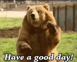 Dancing Bear Meme - bear gifs get the best gif on giphy