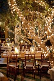 outdoor wedding tree lights