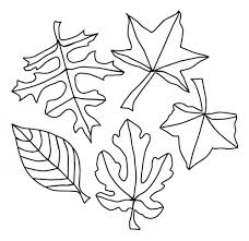 five leaves good coloring pages for kids kl printable leaves