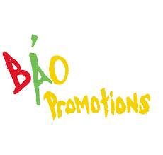 bao promo logo home png