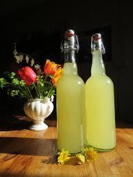 cuisiner le pissenlit recette de la limonade lacto fermentée aux fleurs de pissenlit