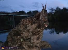 Werewolf Costume Homemade She Werewolf Costume
