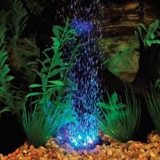 color changing led ring petsolutions