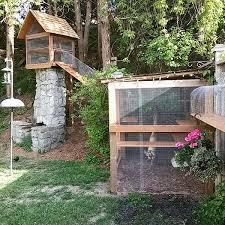 best 25 diy cat enclosure ideas on cat enclosure
