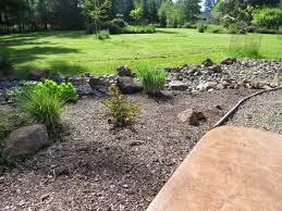 Rock Garden South by New Plants For The
