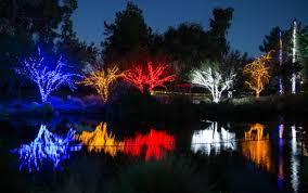 christmas zoo lights christmas lights decoration