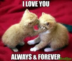 I Love U Meme - i love u meme funny memes about love