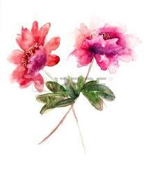 Peony Flowers 24 135 Peony Cliparts Stock Vector And Royalty Free Peony