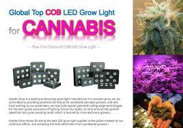 Led Grow Lights Cannabis Cob Led Grow Lights For Marijuana Cannabis Master Grow