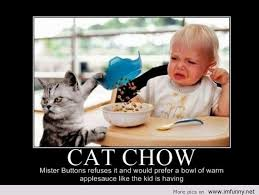 Bad Kitty Meme - funny cat chow