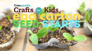egg carton seed starts pbs parents crafts for kids youtube