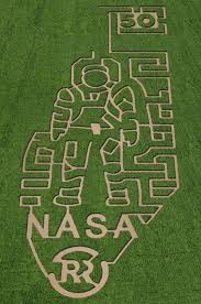 201 best maize ing challenges images on corn maze