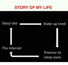 Early Internet Memes - story of my life sleep late wake up tired the internet promise to
