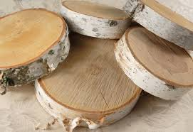 Birch Home Decor Birch Tree Slices Traditional Home Decor Interior Decor