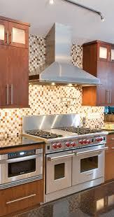 Birdseye Maple Kitchen Cabinets 42 Best Contemporary Kitchens Images On Pinterest