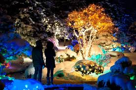 Christmas Decoration For Garden by 8 Botanical Garden Christmas Lights To Consider For Decorating