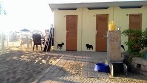 bagno per cani spiagge per cani a rimini dove andare ecco il bagno 82