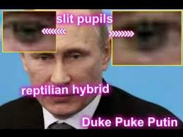 Reptilian Meme - putin reptilian hybrid youtube