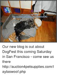 Saturday Memes 18 - woof it is in m mouth httpauction4petsuppliescomlaylaswoofphp 04